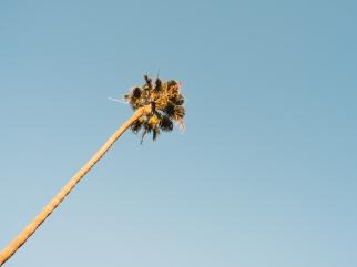 Eric Hsu photography California