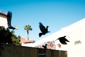 Eric Hsu Street Photography Lisbon Portugal